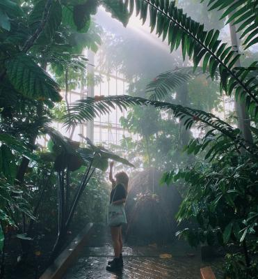 Botanic Garden Meise Girl - 24 hours in Brussels, a city guide to the capital of Europe