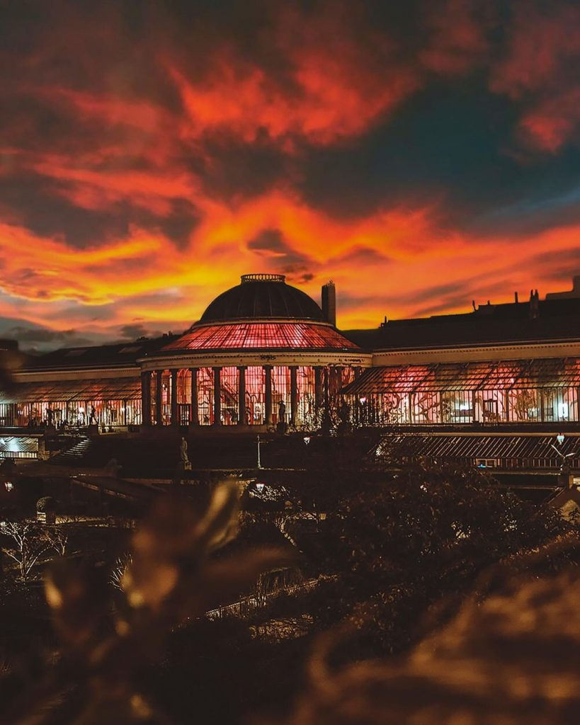 Botanique evening - Best parks and gardens to picnic in Brussels