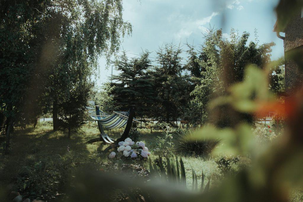 "backyard paradise - How to turn quarantine into a ""Staycation"""