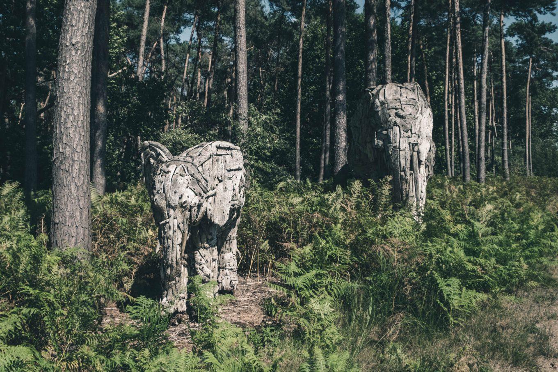 Review: Verbeke Foundation, Europe's biggest art park