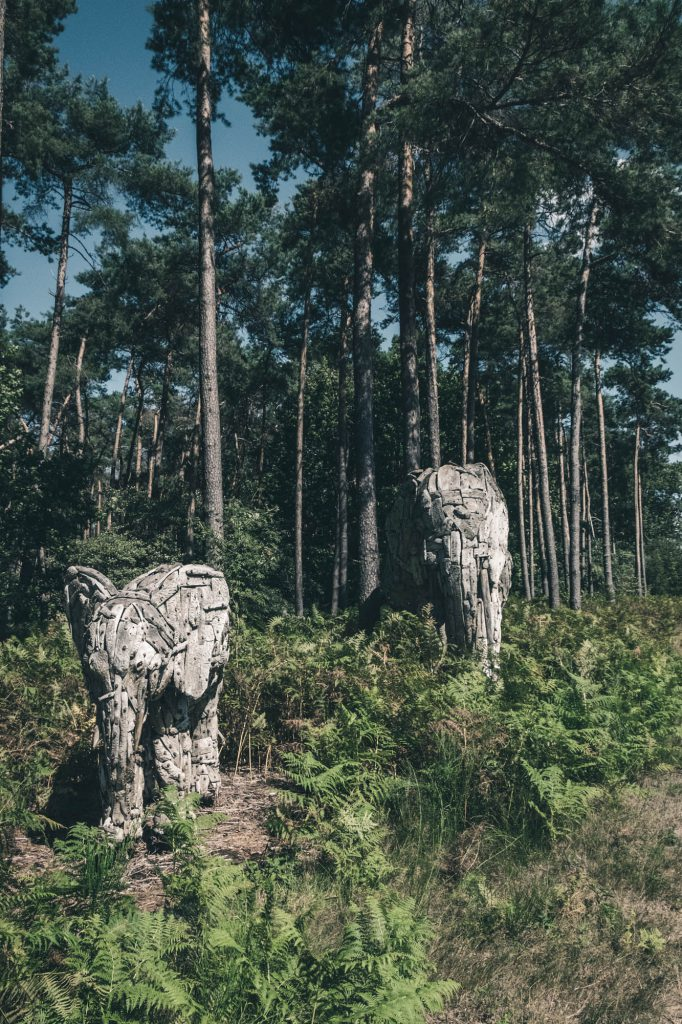 2020 08 21 Verbeke Foundation 36 - Review: Verbeke Foundation, Europe's biggest art park