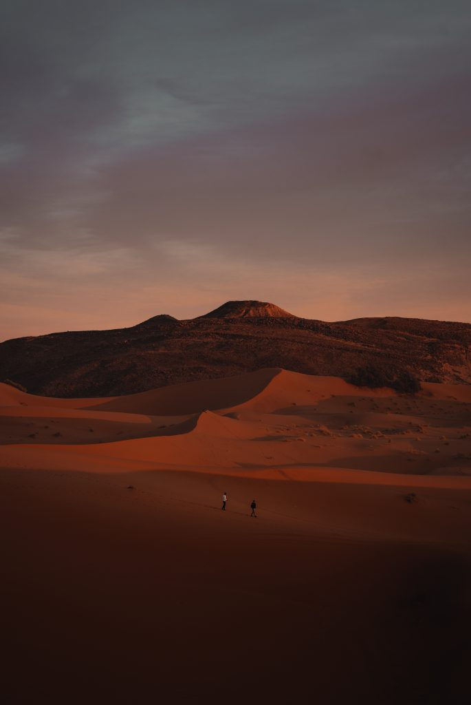 Sahara Desert dunes overview - Stargazing in the Sahara desert