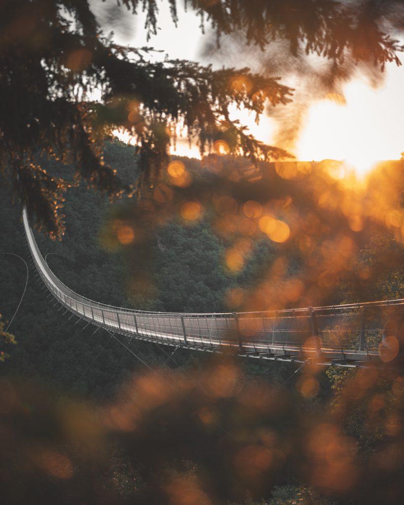suspension bridge geierlay2 - Hängeseilbrücke Geierlay: Swinging over a German valley