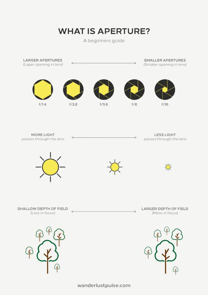 Understand Exposure: What is aperture?